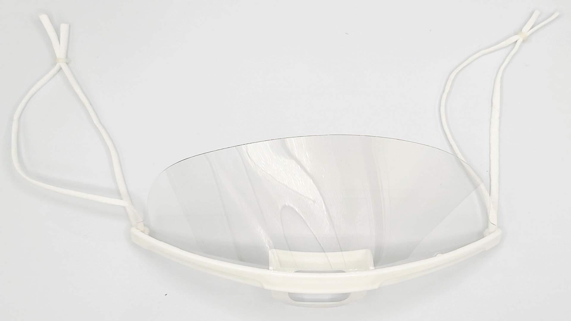 mouth shield